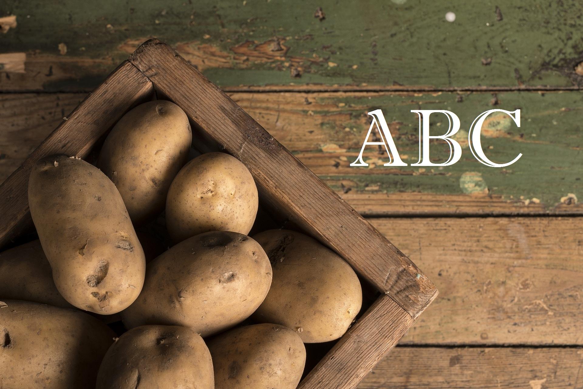 Burgonya ABC